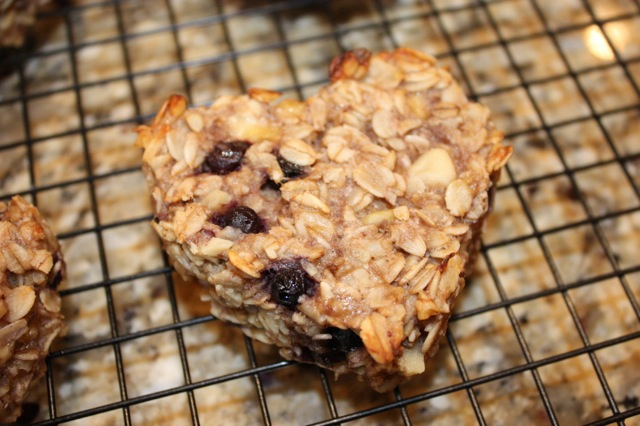 Blueberry Banana Walnut Breakfast Bars