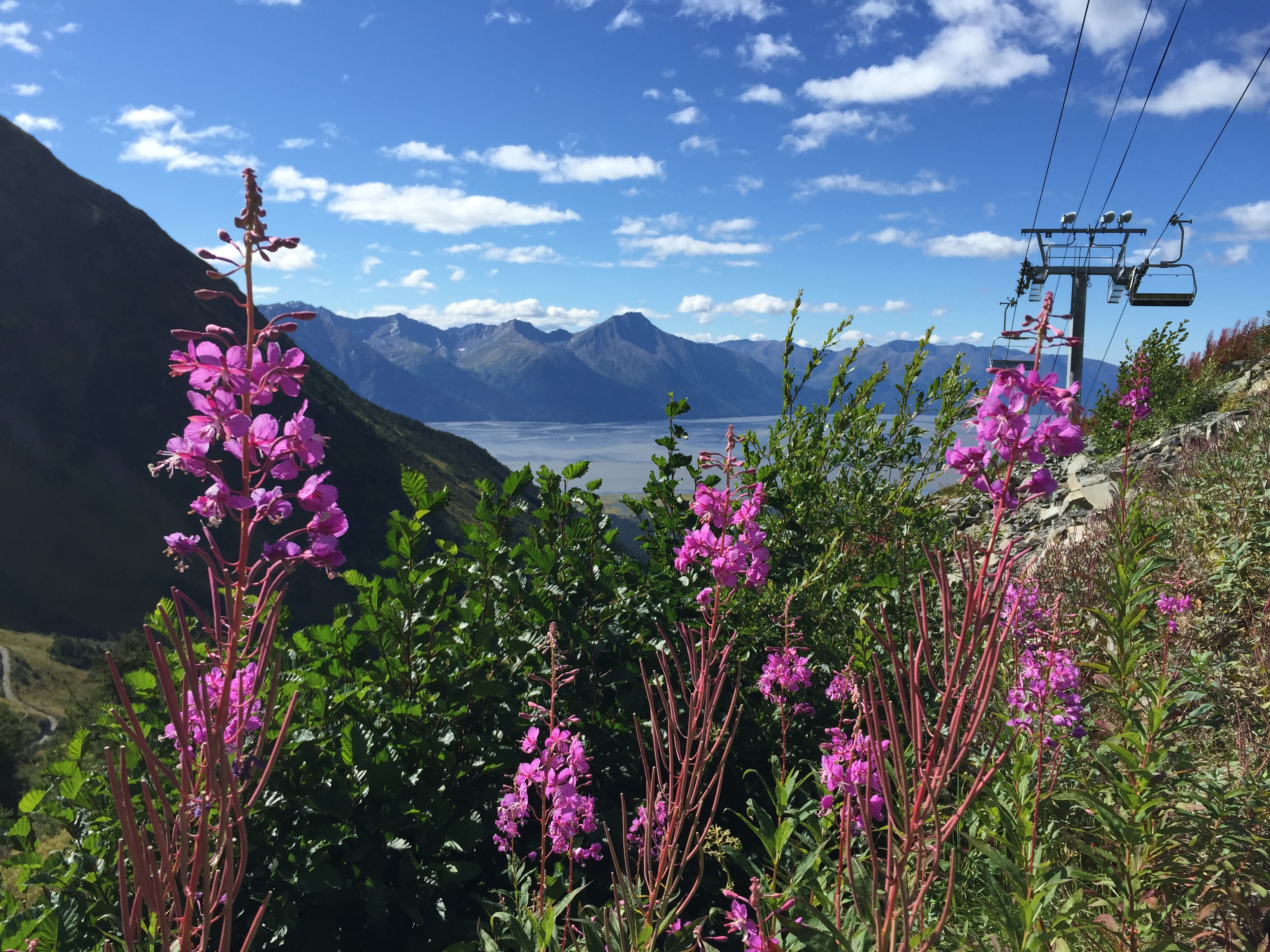View from Alyeska