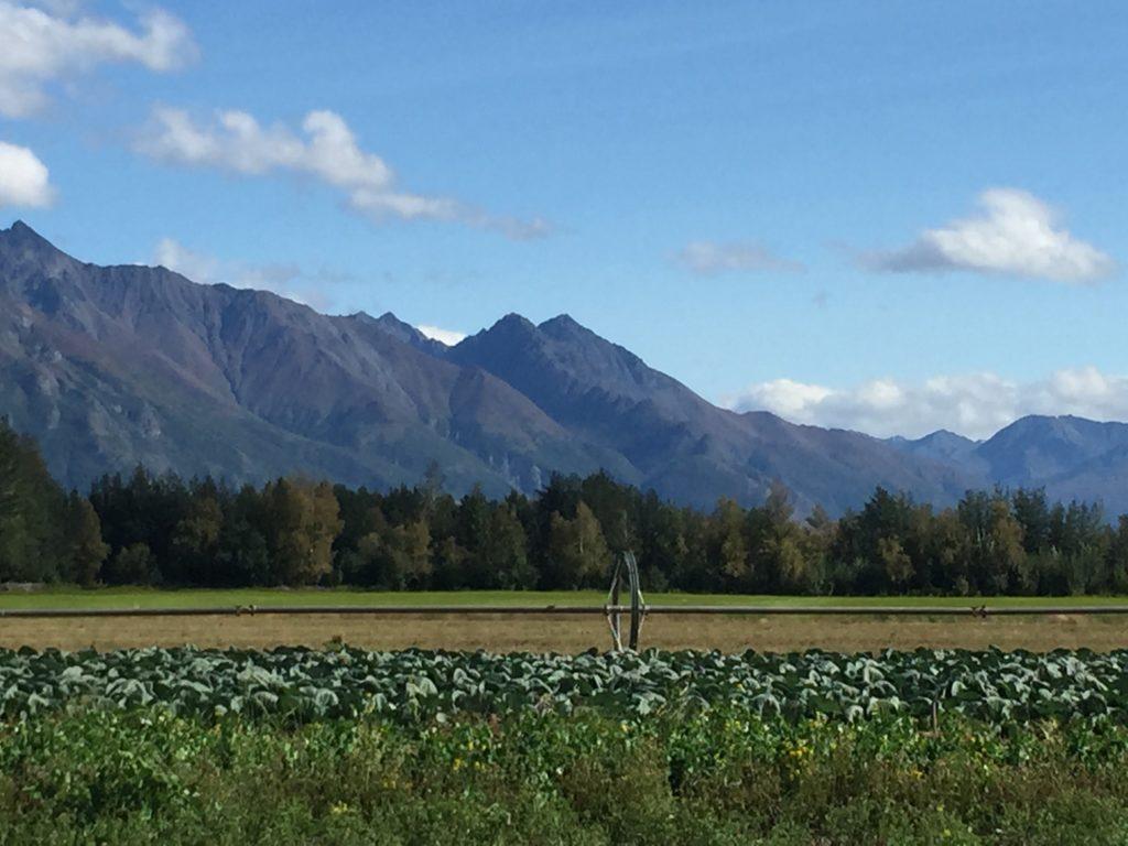 Alaska Garden Tour